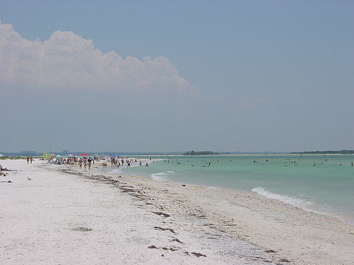 Honeymoon Island State Park (Image 6)