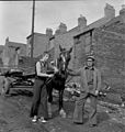 Horse and cart, Newcastle upon Tyne (6521109889).jpg