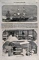Hospital ships, China; sketches showing the interior includi Wellcome V0015324.jpg