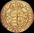 Hun II Rakoczi Ferenc Dukat 1705 NB Huszar 1522 obverse.jpg
