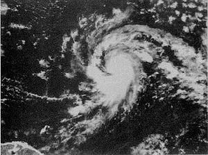 1994 Atlantic hurricane season - Image: Hurricane Chris (1994)