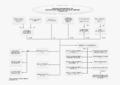 IPC Organisation Chart (2).png