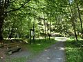 Im Schorgasttal - panoramio.jpg