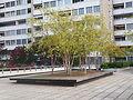 Impression - Statistisches Quartier Hard - Zürich - Bild 5.JPG