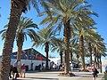 Indian Wells Palms (8562333687).jpg