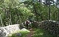 Insel Krk, Wanderweg nach Baška, Primorje-Gorski Kotar County, Kroatien.jpg