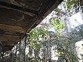 Interior 3 - abandoned Soviet administration, Sukhumi.jpg