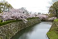 Japan 040416 Himeji Castle 003.jpg
