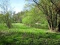 Jar Raduni - panoramio.jpg