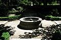 Jardin Botanico (11) (9376529379).jpg