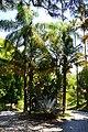 Jardin botanique (9305419598).jpg