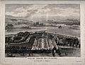 Jardin des Plantes, Perpignan; bird's eye view. Line engravi Wellcome V0014358.jpg