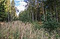 Jersikas pagasts, Latvia - panoramio (23).jpg