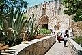 Jerusalem Porte de Sion Cactus.JPG