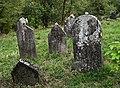 Jewish cemetery Checiny IMGP7886.jpg