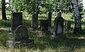 Jewish cemetery Zolynia IMGP4588.jpg