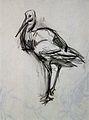 Joseph Crawhall - Stork.jpg