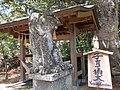 Kagami-jinja Kosodate Komainu.jpg