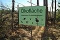 Kaiserwald Ökofläche 02.jpg