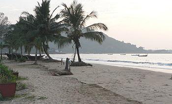 Coconut palms on the beach, Karwar.