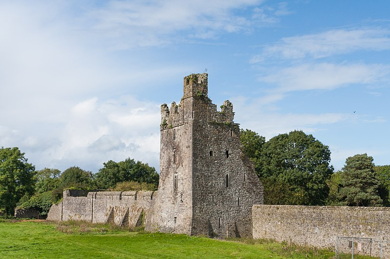 File:Kells Priory Water Tower 2017 09 13.jpg