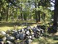 Kihnu kalmistu1.jpg