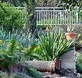Kimberly Crest, Carriage House Garden, Prospect Park 4-2012 (7039429317).jpg