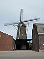 Kinrooi, molen foto2 2011-03-20 13.08.JPG