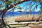 Kopachuck State Park beach, 02.jpg