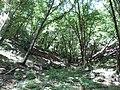 Koritata protected area, Varvara, Bulgaria 02.JPG