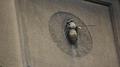 Kraków, ul. Św. Marka 8 (pszczoła strona prawa) fot. 009a.png