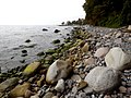 Kreideküste auf Rügen 02.JPG
