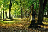 Krosno - stary cmentarz.jpg