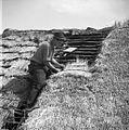 Krovec Slavko Štrumbelj, Mali Lipovec, pokriva streho na štali (hlevu) doma 1957.jpg