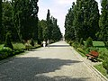 Kudowa-Zdrój, park zdrojowy 10.jpg