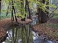 Kunratický les, Kunratický potok, poblíž před restaurací Na tý louce zelený.jpg