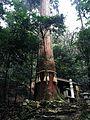 Kurama-dera-Gikeido.jpg