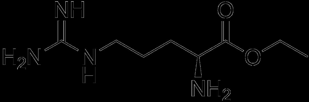 Arginine  C6H14N4O2  PubChem