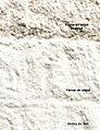 LPCC-593-Farines de sègol i de blat.jpg