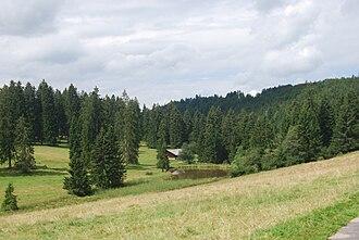 Lajoux (Switzerland) - Pond and hills outside Lajoux
