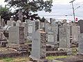 Landscape, Cneseth Israel Cemetery, Reserve Township, 2015-08-18, 01.jpg
