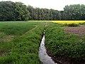 Landschaftsschutzgebiet Strothheide Melle Datei 36.jpg