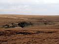 Landslip above the Pennine Way - geograph.org.uk - 366932.jpg