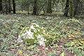 Le-gavre alg-pilier 02.jpg