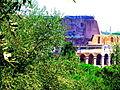 Le Colisée dans la verdure.JPG