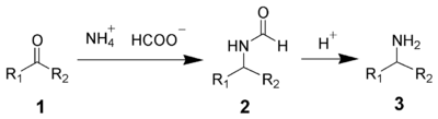 The Leuckart reaction