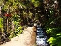 Levada 25 Fontes, Madeira, Portugal, June-July 2011 - panoramio (39).jpg