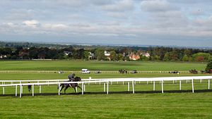 Long Hill and Warren Hill, Newmarket.jpg