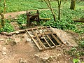 Longwood Swallet - geograph.org.uk - 401658.jpg