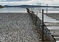 Lugworm casts and jetty on mudflats of Gullmarsviken, Gullmarn 1.jpg